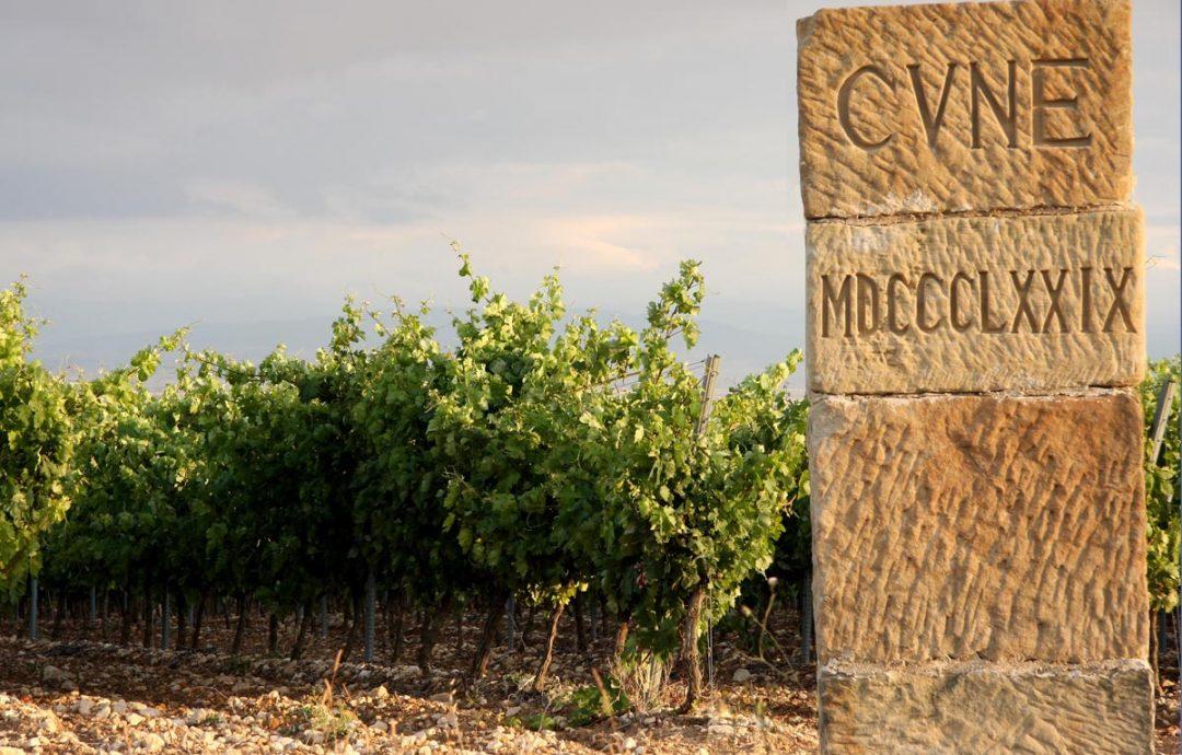 CVNE Spanish Winery